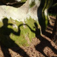 Shadows on the wall/stone