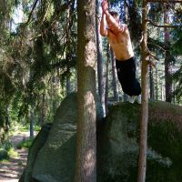 Martin - Tree Präzisionssprung