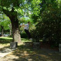 Elmar jumping