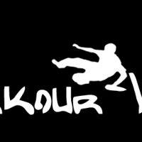 Parkour-Vienna Logo